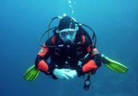 Unterwasserbilder mit dm Unterwasserkamera